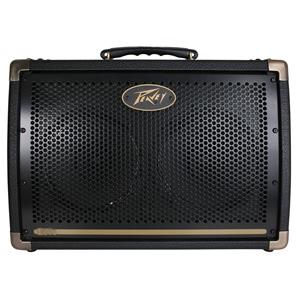 Peavey Ecoustic E208 Acoustic Amp