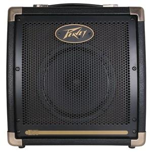 Peavey Ecoustic E20 Acoustic Amp