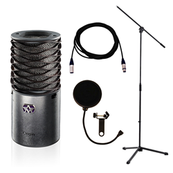 Aston Origin Stand/Lead/Pop Filter Recording Bundle