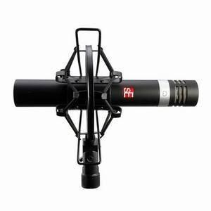 SE Electronics SE5 Studio Condenser Microphone