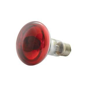 Red Lamp for 4-Channel Light Effect